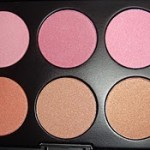Crown Brushes Blush Palette