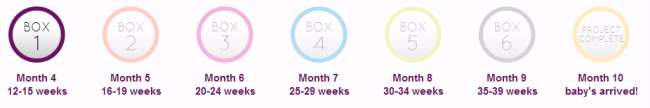 Project B Box months