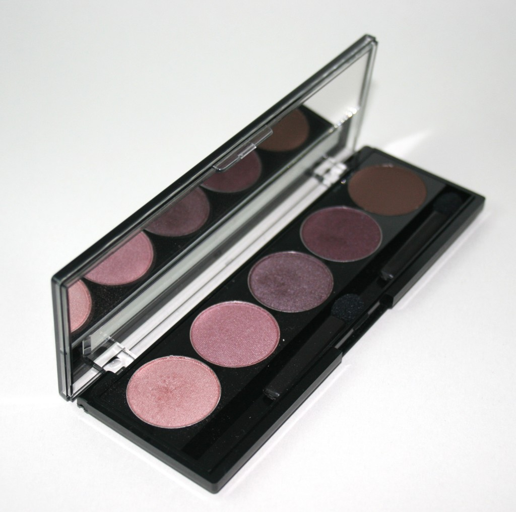 JN Beauty Plum Crazy Eyeshadow Palette