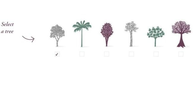 Caudalie Tree