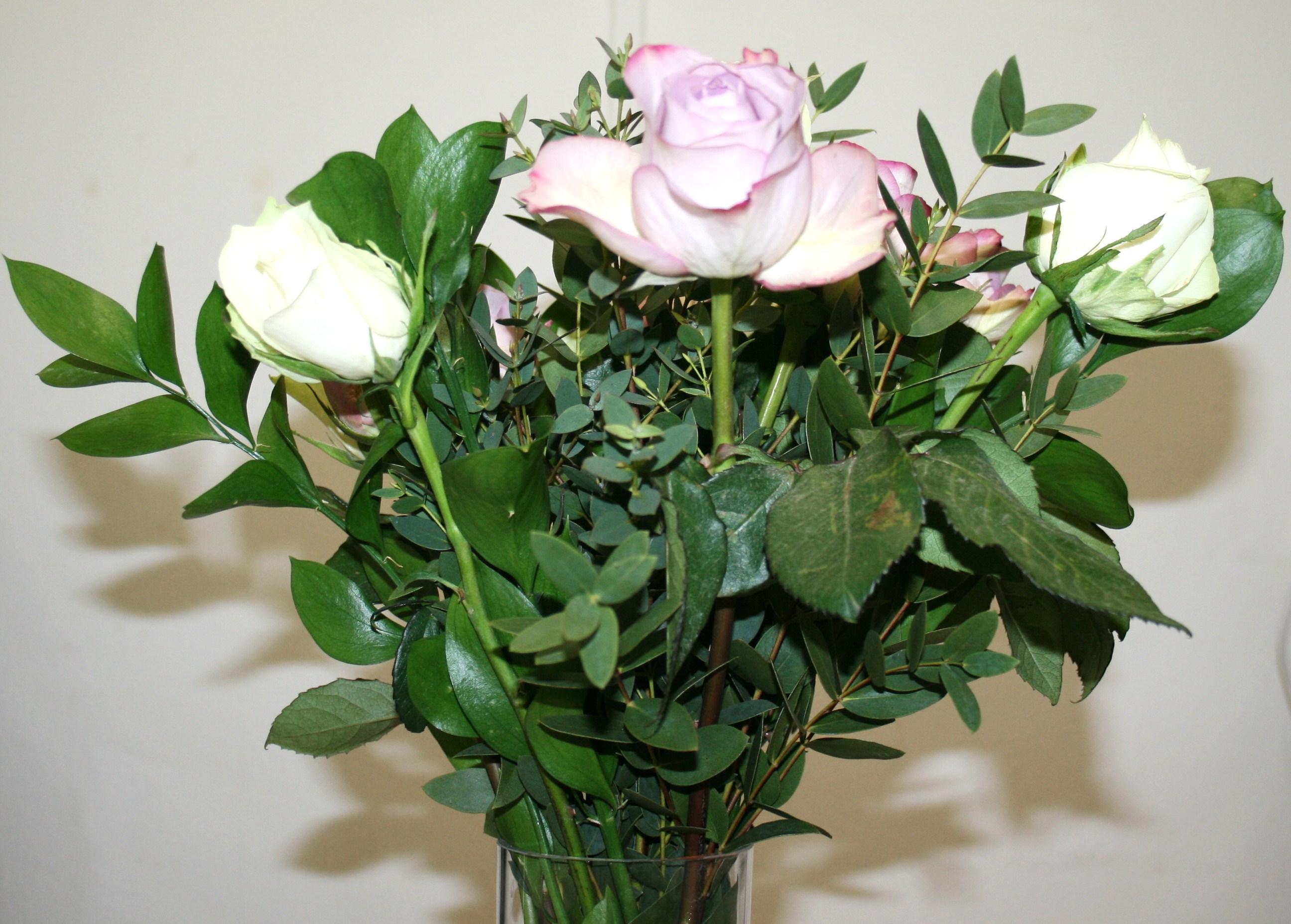 Valentines ideas flowers by post beauty geek uk izmirmasajfo