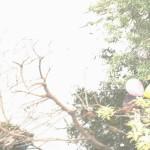 #LightsCameraCurrys Camera Workshop