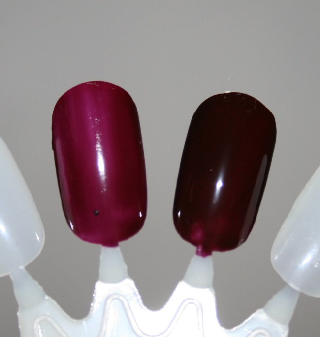 Barry M Midnight Gelly Collection Black Cherry Swatch