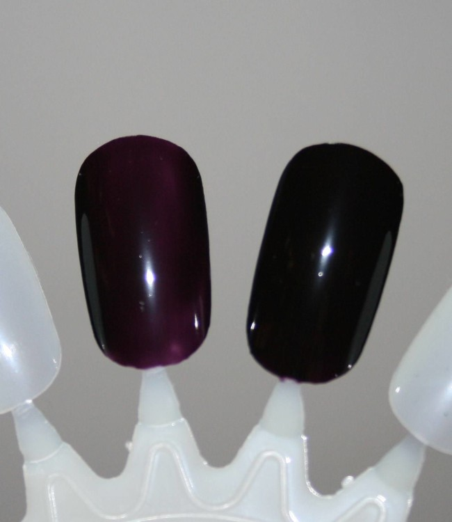 Barry M Midnight Gelly Collection Black Currant Swatch