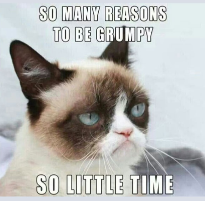Grumpy Cat Soul Time