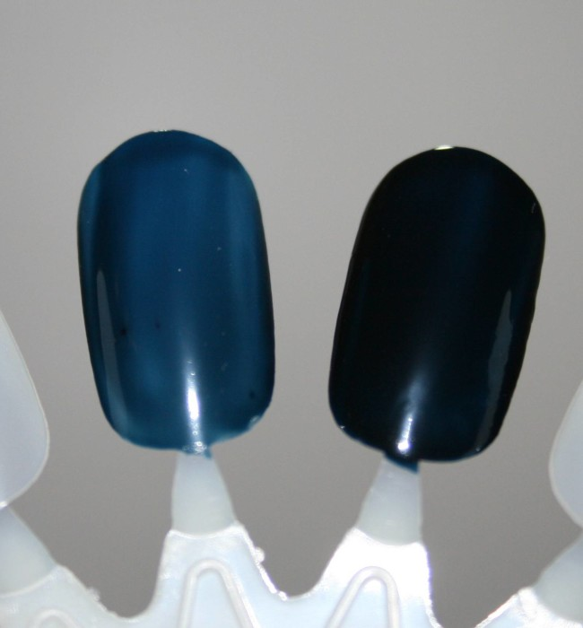 Barry M Midnight Gelly Collection Black Grape Swatch